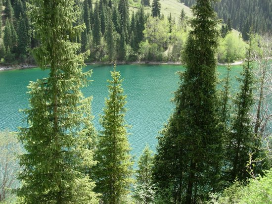 Almaty, Kazajistán: Каинды