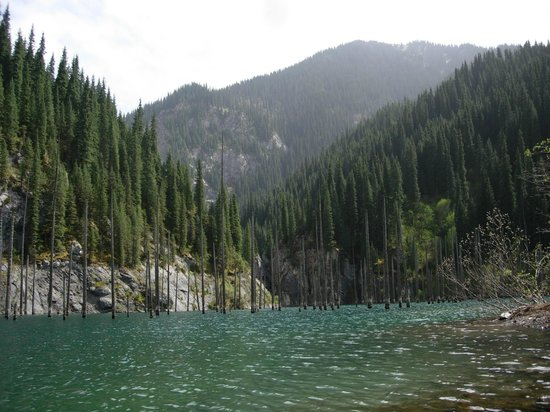 Kolsai Lakes : Каинды