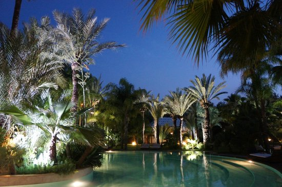 Lodge K Hotel & Spa: le jardin luxuriant
