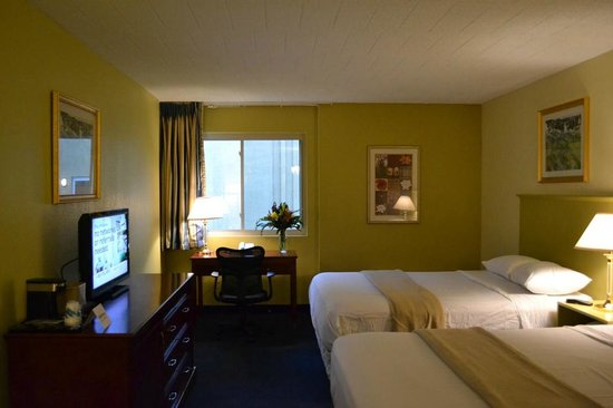 Travelodge Bradley Airport : Guest Room