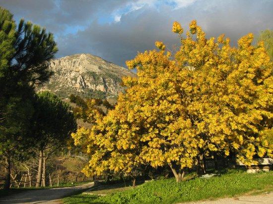 Giardino Donna Lavia : Aussicht