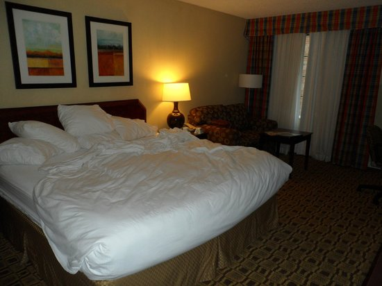 Clarion Hotel Lexington Conference Center: King room