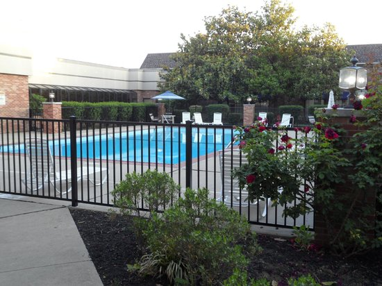 Clarion Hotel Lexington Conference Center: Pool  view