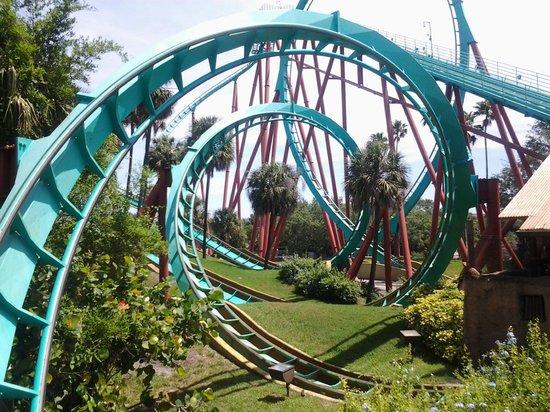 Busch Gardens: Kumba