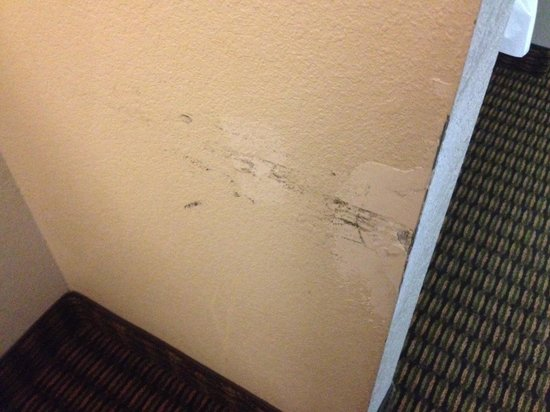 Quality Inn & Suites: Damage from the Desk Chair Needs Repair