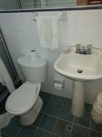 Aparta Hotel Cañaveralejo: baño de la habitación