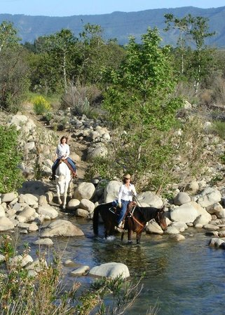 Ojai Valley Trail Riding Company: Ride through the river...