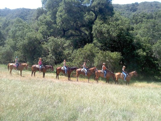 Ojai Valley Trail Riding Company: Beautiful Valley's...