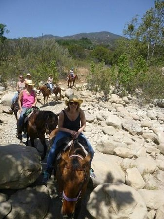 Ojai Valley Trail Riding Company : Crossing the River in Summer...