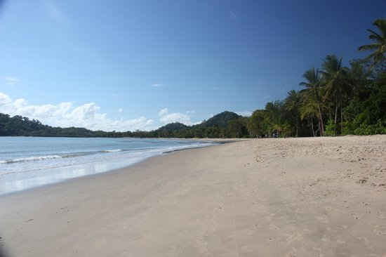 Kewarra Beach Resort & Spa : kewarra beach