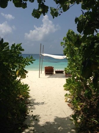 Coco Bodu Hithi: Villa Beach