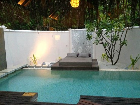 Coco Bodu Hithi: Villa Private Pool