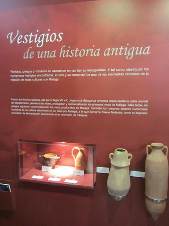 Museo del Vino Malaga: Wine vessels of the 8th century.