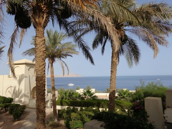 Grand Rotana Resort & Spa: VIEW FROM OUR BEDROOM