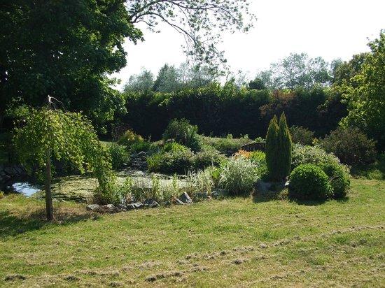 Detling Coachhouse: View of Garden