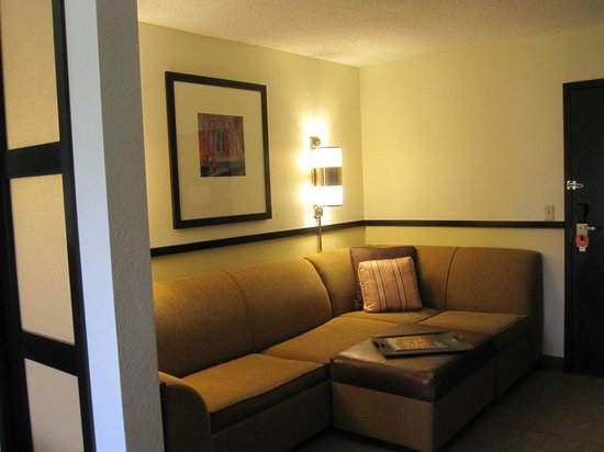 Hyatt Place Colorado Springs: Seating area in room (also a pull out bed)