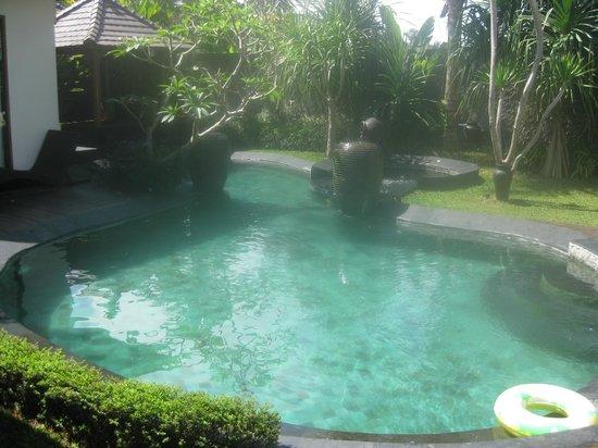The Kampung Ubud Villa: kolam renang bersih dan bagus