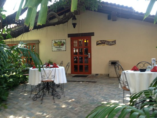 Vallarta Torre : Cafe