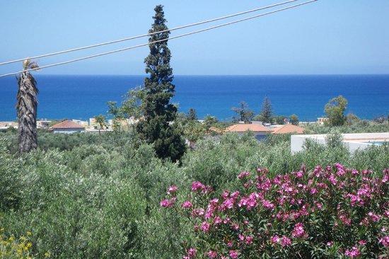 ميتوهي جيورجيلا: Ocean view from our patio