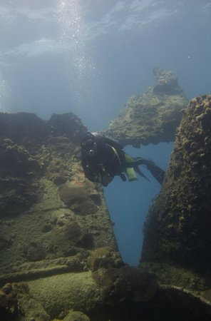 Puerto Lobos Dive Camp