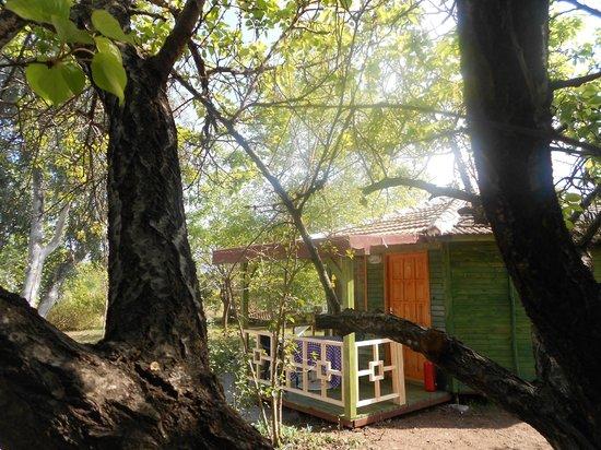 Fire Pension: bungalow