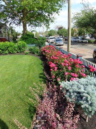 Albert Stevens Inn: Front yard