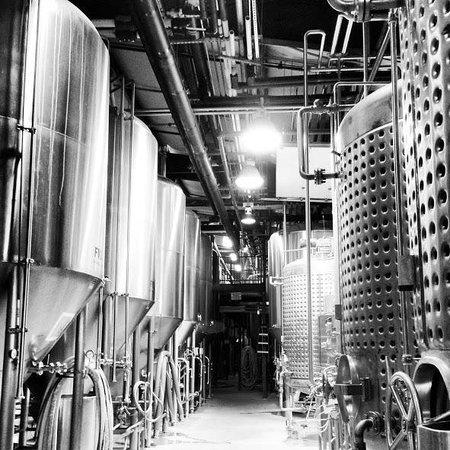 Deschutes Brewery: Behold: the beauty that is Deschutes!