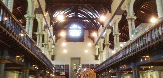 Hunterian Museum: inside