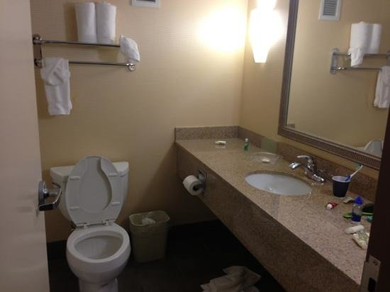 Holiday Inn Kalamazoo-West: bathroom