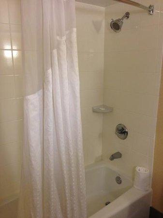 Holiday Inn Kalamazoo-West: shower