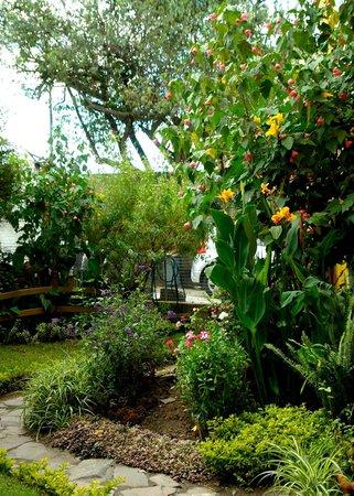 La Casa Amarilla: Jardin Posterior