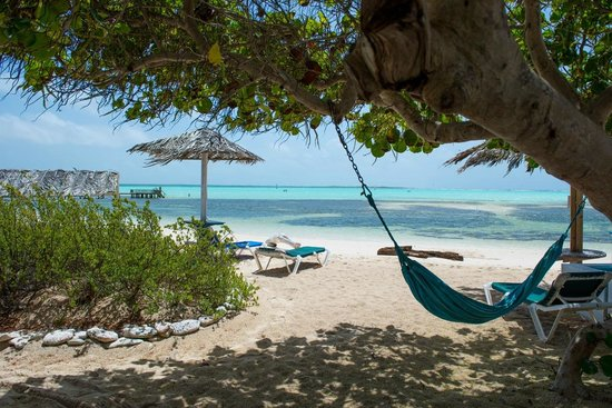 Sorobon Beach, Wellness & Windsurf Resort: Uitzicht van terras naar strand