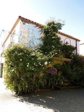 Marina Motel : El edificio.