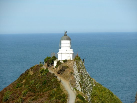 Nugget Point: The lighthouse perched on a cliff