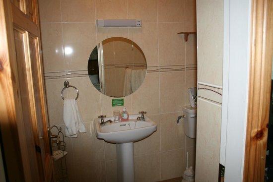 O'Shea's Ceol Na Habhann: Bathroom
