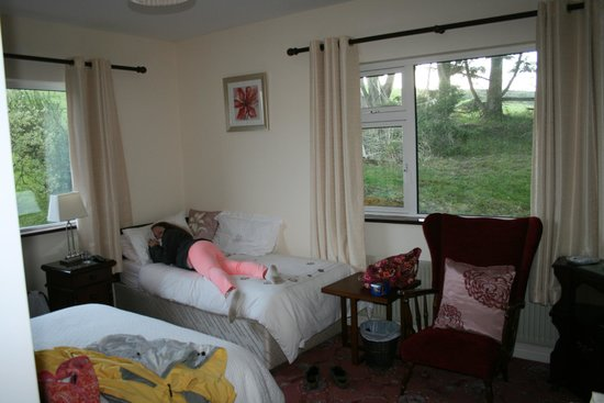 O'Shea's Ceol Na Habhann: Room with twin and double bed