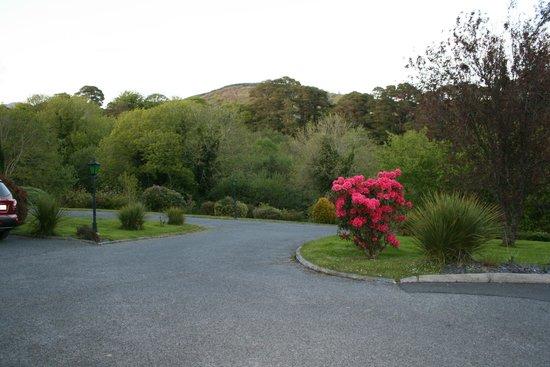 O'Shea's Ceol Na Habhann: Front drive of O'Shea's