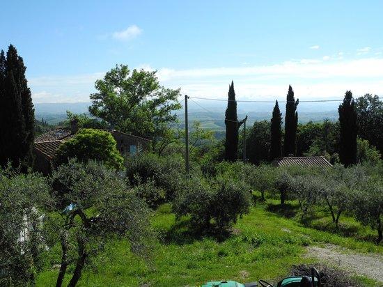 Agriturismo Il Castagnolino: Ausicht