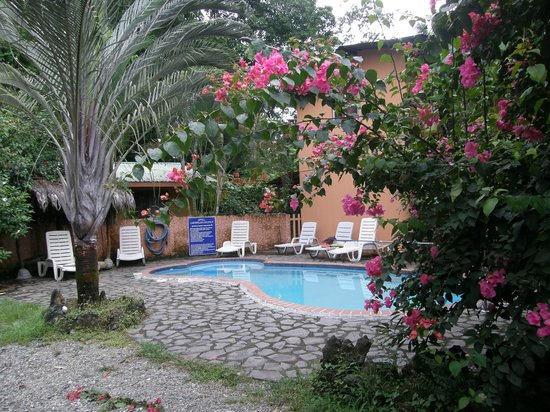 写真Hotel Caribbean Coconut枚