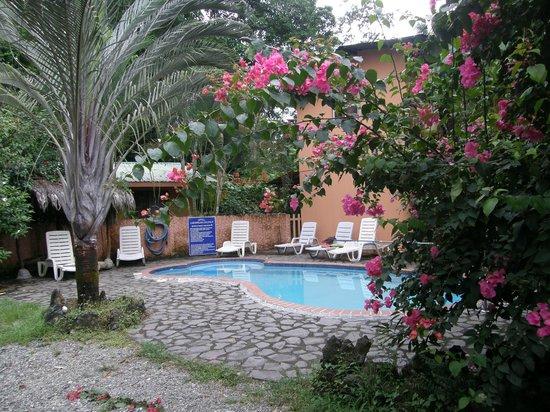 Hotel Caribbean Coconut: Kleiner Pool mit Jacuzzi