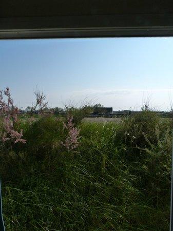 Camping Sunêlia Le Clos du Rhône: la vista dalla mobile home