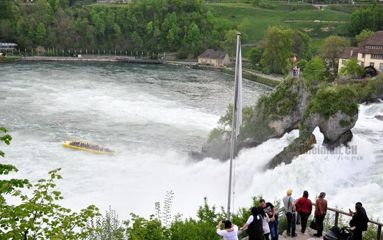 Rheinfall from the top