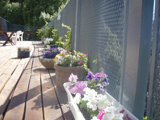 Muguet: Nuestras flores