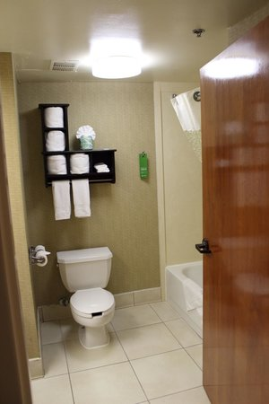 Hampton Inn Petersburg - Ft. Lee : Bathroom