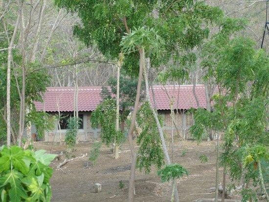 Rancho Cecilia Nicaragua : Jungle Cabanas at Rancho Cecilia