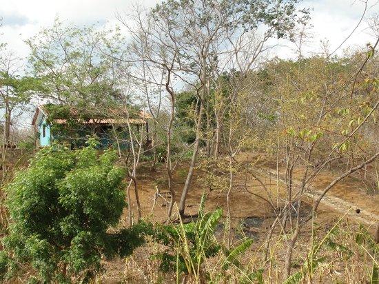 Rancho Cecilia Nicaragua: Rancho Cecilia , the dry season