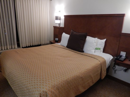 Hyatt Place Baltimore/BWI Airport: King bed in the room