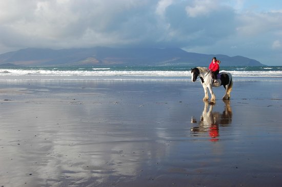 Camp Junction House & Apartments: Horseback riding on Castlegregory beach thanks to John