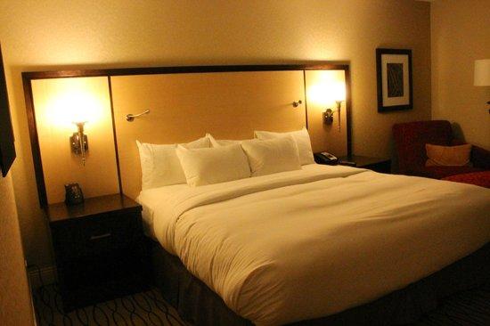 Hilton Rosemont / Chicago O'Hare: Room