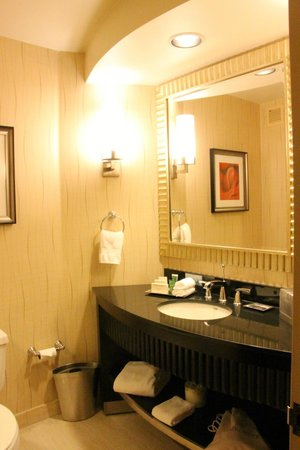 Hilton Rosemont / Chicago O'Hare: Bathroom